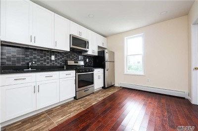 Brooklyn Single Family Home For Sale: 180 Fountain Ave