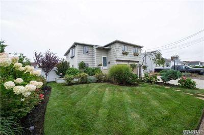 Freeport Single Family Home For Sale: 98 E Bedell St