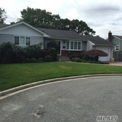 Farmingdale Single Family Home For Sale: 2 Third Ave