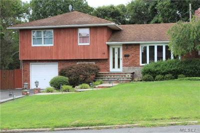 Smithtown Single Family Home For Sale: 90 Howell Dr