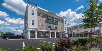 Farmingdale Rental For Rent: 40 Elizabeth St #212