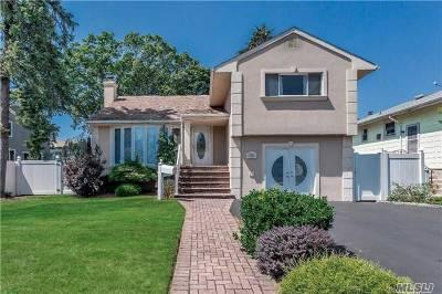 Merrick Single Family Home For Sale: 2206 Washington St