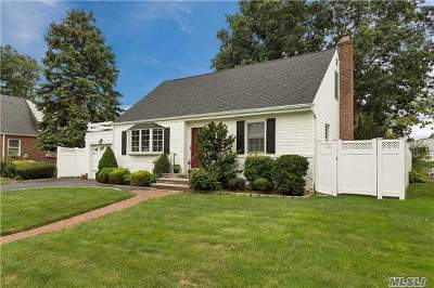 Massapequa Park Single Family Home For Sale: 42 Clark Blvd