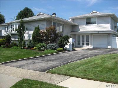 Oceanside Single Family Home For Sale: 22 Elaine Dr