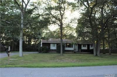 Medford Single Family Home For Sale: 210 Oswego Ave