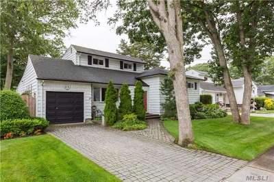 Massapequa Park Single Family Home For Sale: 218 Willow St