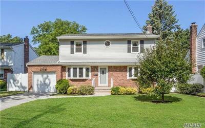 Farmingdale Single Family Home For Sale: 107 Melville Rd
