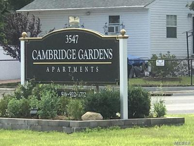 Amityville Rental For Rent: 3547 Great Neck Rd #66D