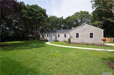 Islip Single Family Home For Sale: 65 Tamarack St