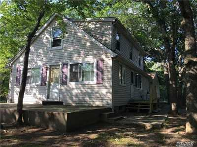 Suffolk County Single Family Home For Sale: 301 Radio Ave