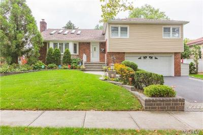 East Meadow Single Family Home For Sale: 1478 Eric Ln