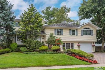 Jericho Single Family Home For Sale: 27 Middle Ln