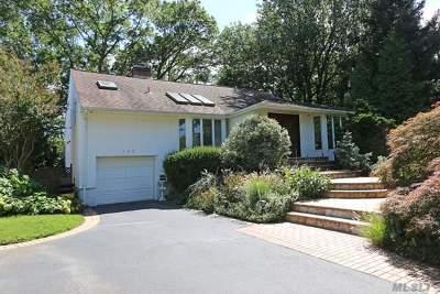 Jericho Single Family Home For Sale: 162 Birchwood Park Dr