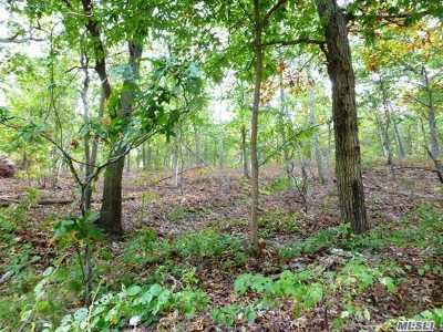 Smithtown Residential Lots & Land For Sale: Lot 2 Meadow Rd
