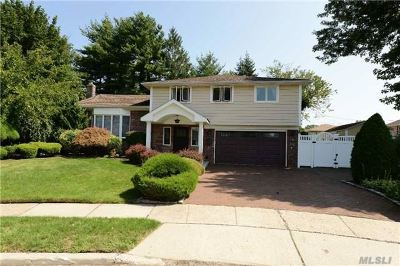 Hicksville Single Family Home For Sale: 41 Belle Ct