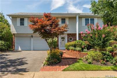 Bellmore Single Family Home For Sale: 2685 Frances St