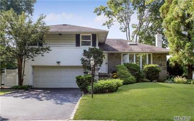Syosset Single Family Home For Sale: 35 Morris Dr