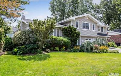 Jericho Single Family Home For Sale: 91 Forest Dr