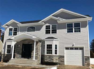 Syosset Single Family Home For Sale: 47 Bluebird Dr