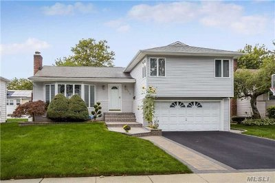 East Meadow Single Family Home For Sale: 1483 Sylvan Ln