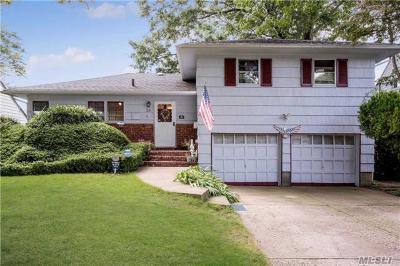 Garden City Single Family Home For Sale: 38 Maple St