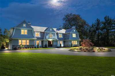 Old Westbury Single Family Home For Sale: 15 Wheatley Rd