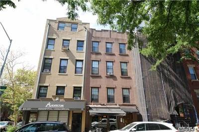 Brooklyn Multi Family Home For Sale: 570 Henry St