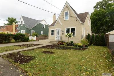 Single Family Home For Sale: 250 Elsie Ave