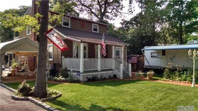 Farmingville Single Family Home For Sale: 62 Powell Ave