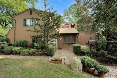 Roslyn Heights Single Family Home For Sale: 1 Hill Ln