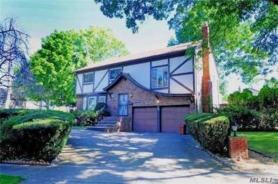 Westbury Single Family Home For Sale: 345 Parkway Dr