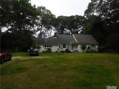 East Hampton Single Family Home For Sale: 1181 Springs Fireplac Rd