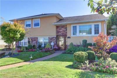 Island Park Single Family Home For Sale: 158 Kingston Blvd