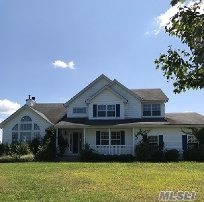 Middle Island Single Family Home For Sale: 19 Sander Ct