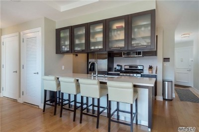 Forest Hills Condo/Townhouse For Sale: 64-05 Yellowstone Blvd #417