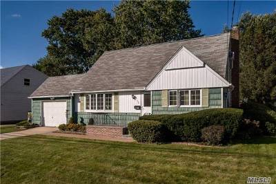 East Meadow Single Family Home For Sale: 650 Tabor Pl