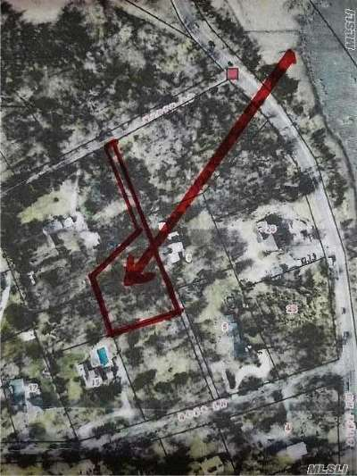 Setauket Residential Lots & Land For Sale: North Rd