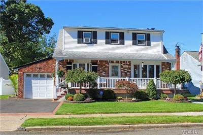 East Meadow Single Family Home For Sale: 752 Blackstone Ave