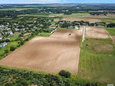 Calverton Residential Lots & Land For Sale: Twomey Ave