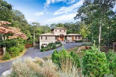 East Hampton Single Family Home For Sale: 19 N Pass Rd