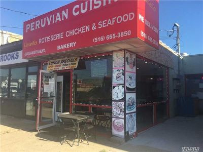 Island Park, Long Beach, Lynbrook, Oceanside, Rockville Centre Business Opportunity For Sale: 4343 B & C N Austin Blvd