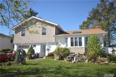 Jericho Single Family Home For Sale: 110 Wayne St