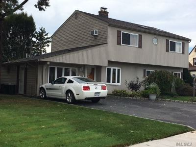 Levittown Single Family Home For Sale: 50 Chestnut Ln