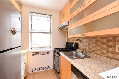 Forest Hills NY Co-op Sold: $428,000