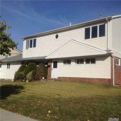 Syosset Single Family Home For Sale: 11 Georgia Dr