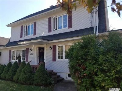 Valley Stream Single Family Home For Sale: 223 Cornwell Ave