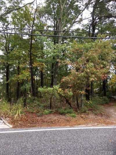Hampton Bays Residential Lots & Land For Sale: 138 B Red Creek Rd
