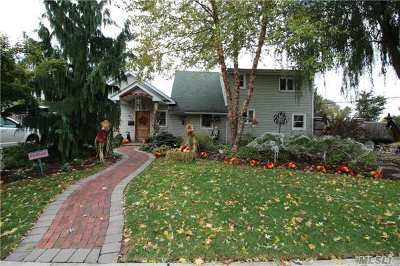Levittown Single Family Home For Sale: 371 Blacksmith Rd
