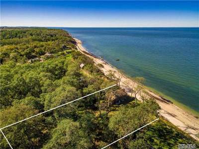 Peconic Single Family Home For Sale: 1450 Salt Marsh Ln