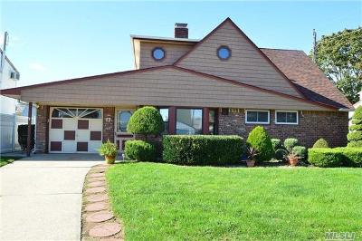 Levittown Single Family Home For Sale: 17 Starlight Ln